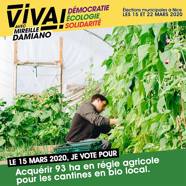 ViVA!_PropositionsEnImages_RégieAgricole
